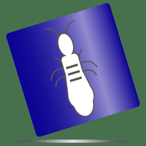 picto termite